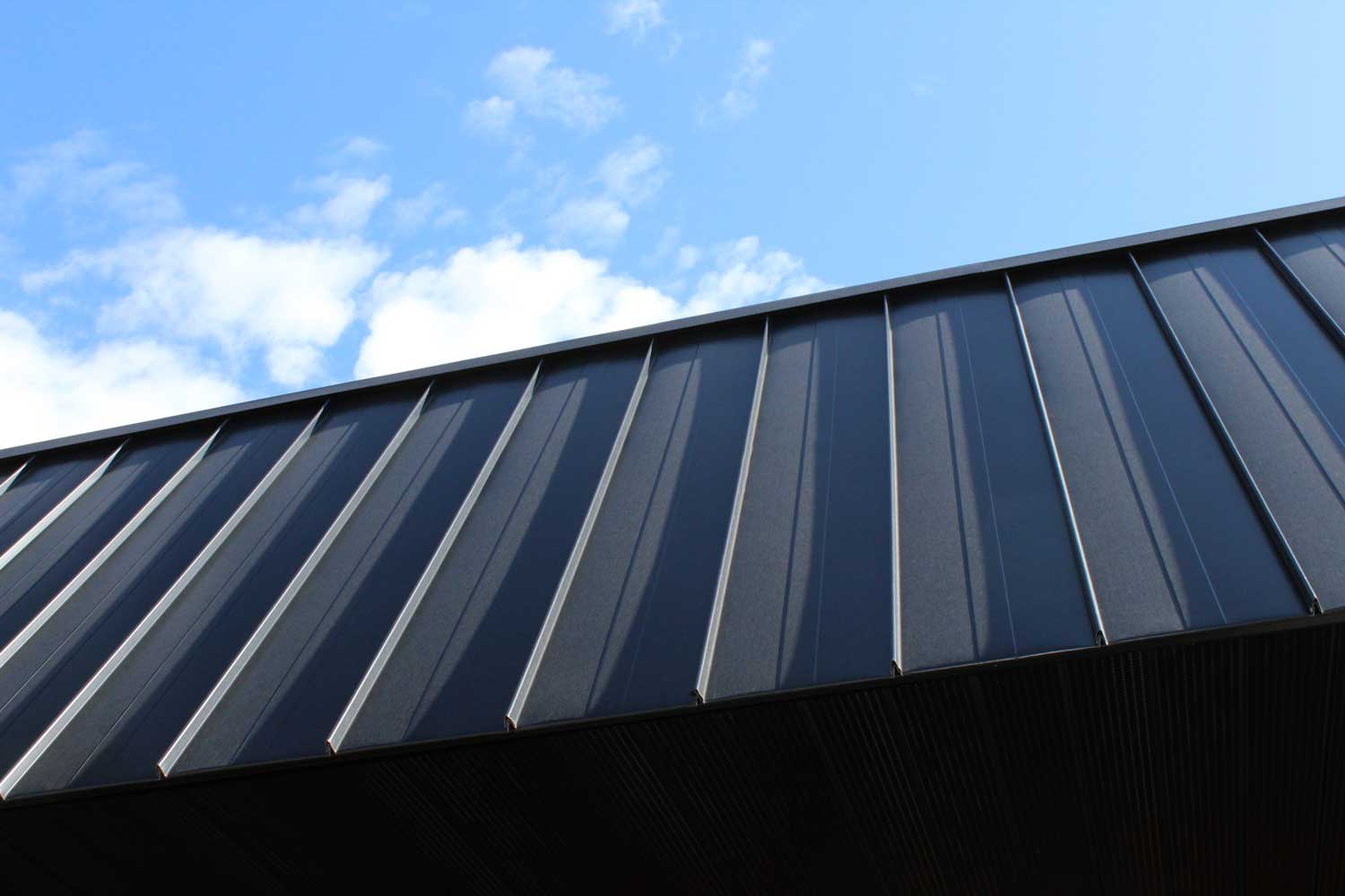 Black Nailstrip Commercial Roof